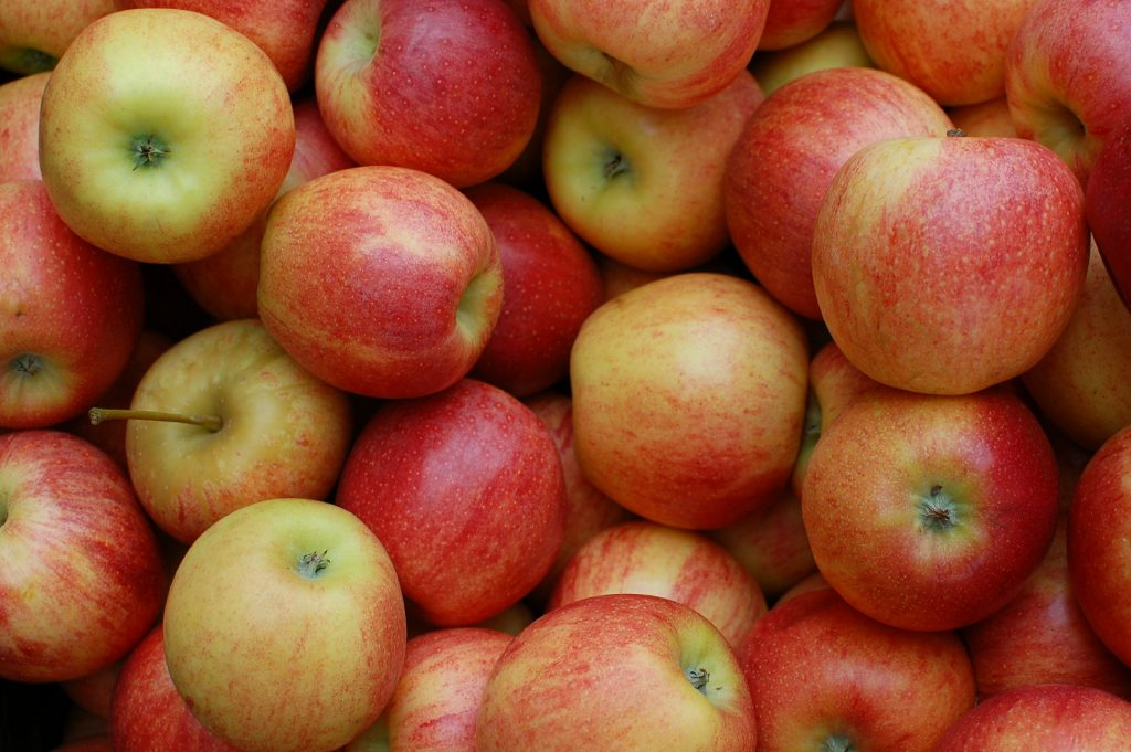 How to tell if your apples are ready for pressing
